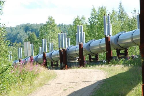 Trans-Alaskan Pipeline - 20© flickr.com/HBarrison