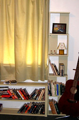 bookshelves1