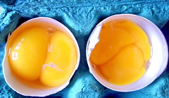 Male and...ex-male (Emilofero) Tags: male egg shell yolk eggshell colourartaward