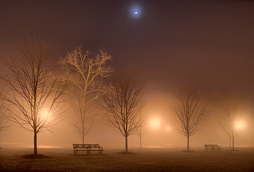 Forest Park, in Saint Louis, Missouri, USA - fog and moon at night