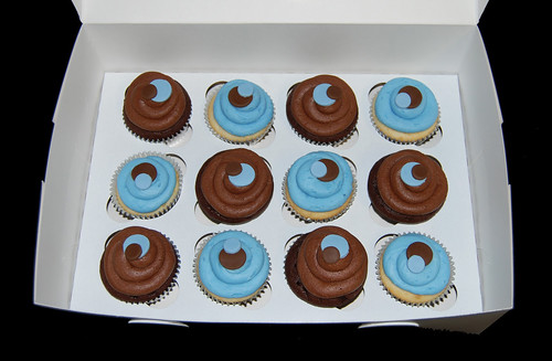 Blue and Brown Sassy Circles Cupcakes
