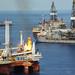Deepwater Horizon response