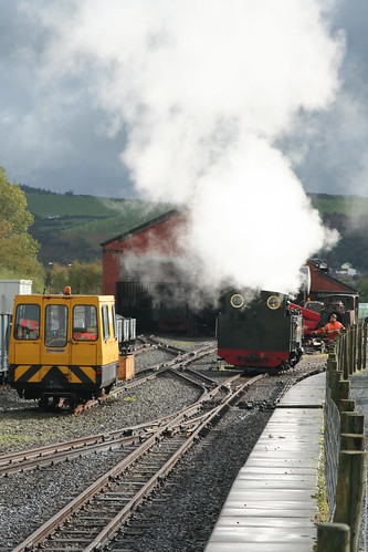 Vale of Rheidol #8 runs on shed for fuel