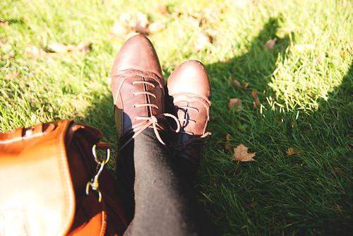 Sense & Sensibility - Autumn Leaves