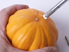 TinyPumpkinArmy - 03