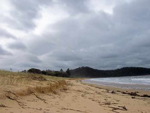 Dune damage near Ettalong Beach on Ocean Beach Umina