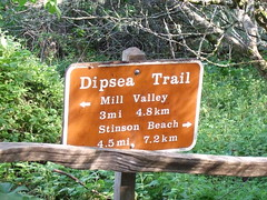 The Dipsea Trail (Tamalpais Valley, California, United States) Photo