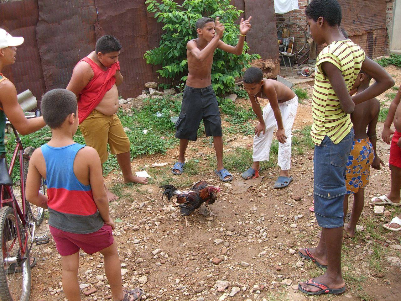 Cuba: fotos del acontecer diario 763843953_5f180cf6b0_o
