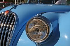 XK140 Jaguar (Meremail) Tags: blue car fast brisbane racing jaguar xk150 xk120 flickrgolfclub shinysunday 7daysofshooting