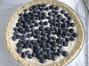 Blueberry-Creamcheese-Cake