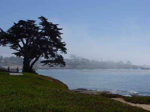 Coast II