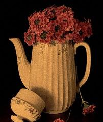 Pink Flowers (honey 77) Tags: china pink flowers stilllife white lantana coffeepot