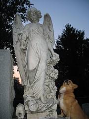 pet grave headstone