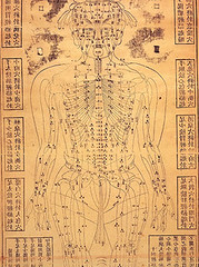 acupuncture chart by seventeenstars