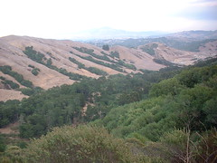 view from the Tilden/Sibley parks trail