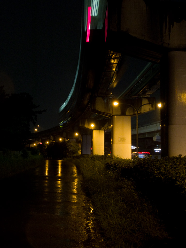 the monorail passing in rainy night