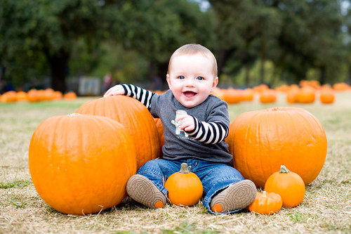 Noah in the pumpkins 8