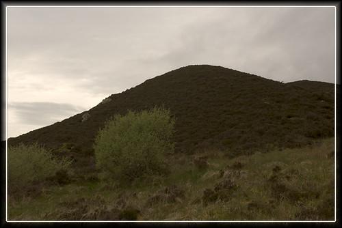 lumpy hillock