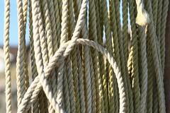 beach rope - by ali edwards