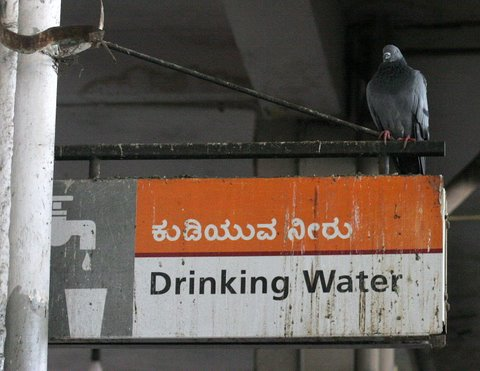 Majestic bus stand Drinking Water