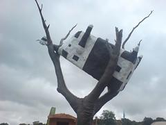 Moo tree