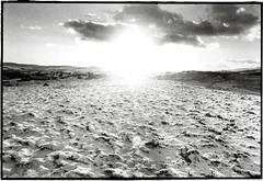Caer Euni, Iron Age Fort, Wales - 12/01 (tobydeveson) Tags: sunset bw white snow megalithic nature sunshine wales 35mm landscapes blackwhite snowy naturallight lensflare mystical fullframe magical uncropped atmospheric kodaktmax400 megaliths bala bronzeage stonecircle gwynedd nikomat nikkormat ironage hillfort otherworldly wintery winterscene scannedprint berwyns landscapephotography arans darkroomprint clwydians ringcairn intothelens settledsnow caereuni tobydevesonlandscapeportfolio sundownthebarrel cefncaereuni primefixed24mmlens