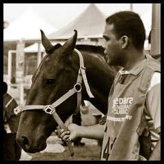 _DSC5580 (hackspot) Tags: people horse animal racing nikond50 malaysia equestrian terengganu horseriding fadzlymubin afzoomnikkor70300mmf456g lembahbidong shutterhack endurance2007 hackspot