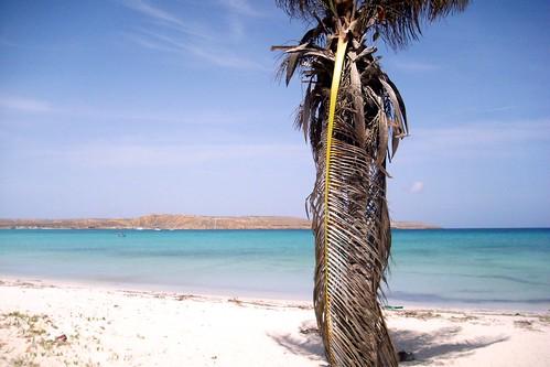 Playa de Cubagua