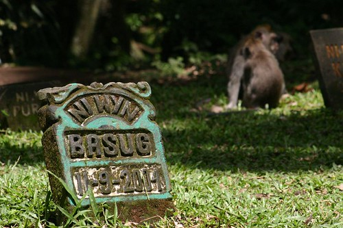 Cemetary in The Monkey Forest, Ubud, Bali.