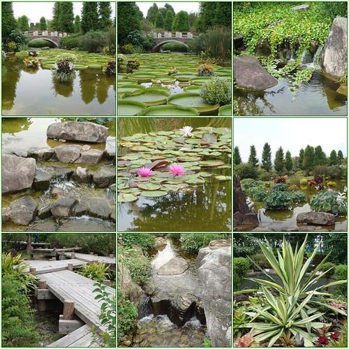 Mizunomori Gardens