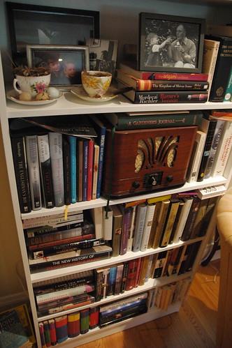 the bookshelf in the living room
