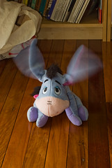 Flap-Eared Eeyore (Craig Jewell Photography) Tags: motion blur toy iso100 movement action ears f10 ear flapping eeyore flap 120sec pentaxk10d cpjsm craigjewellphotography