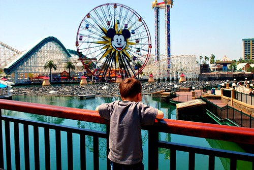 Overlooking the World of Color at Disney's California Adventure