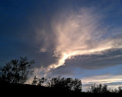 Cloud Strike (Ph0tomas) Tags: cameraphone trees sunset sky newmexico clouds cellphone bushes socorro flickraward droidincredible