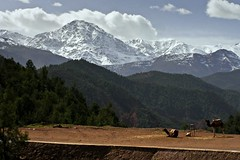 monti dell'atlante marocco (albi_tai) Tags: snow verde alberi landscape selva olympus neve marocco montagna paesaggio ohhh bosco atlante dromedari olympussp510uz sp510uz lifebeautiful albitai catenadellatlante