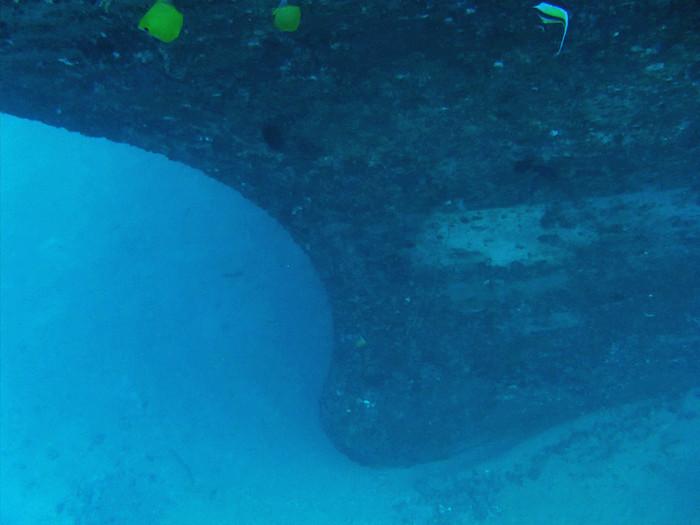 scuba diving oahu 043