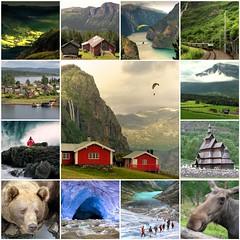 My best of Norway (Bn) Tags: bear norway iceage fdsflickrtoys elk paragliding topf100 flam hemsedal unescosworldheritagelist 100faves visitnorway hydnefossen blueicecave lindoya borgundstavechurch theflmrailway wenorway jostedalsbreenglacier bestofnorway youngelk aurlandfjords norwayswildestandmostmagnificentscenery