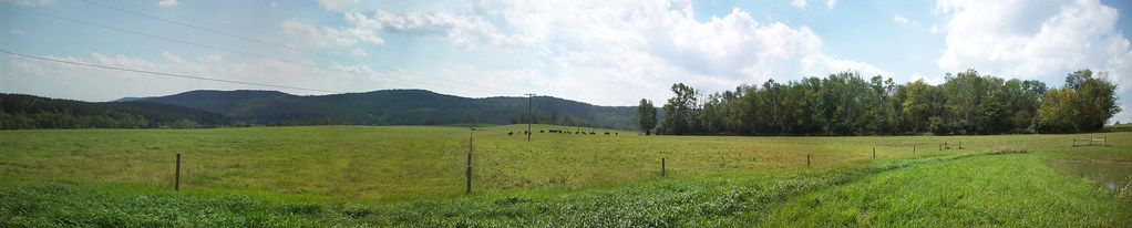 Panoramic: a section of the farm owned by the Sheriff of Madison County, NY. Highlights trees for protection/shelter, fencing to keep cattle out of water source and fencing to create sections for grazing rotation.