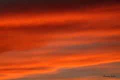 Scarlet and I (Ramen Saha) Tags: sunset clouds eveningsky colorfulclouds ramensaha
