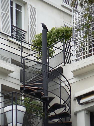 corbeau et escalier en colimaçon ....jpg