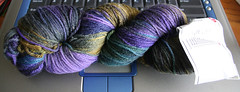 542953889 0dfdb92ab7 m Socks and Sock Yarn and Other Stuff