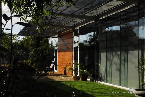 Green House | House Architecture