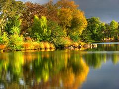 Fall reflections (skawalker) Tags: topf25 1025fav reflections backyard fallcolors topc75 topv999 topc100 topv777 soe hdr beautifulearth 3xp tthdr excellentphotographerawards winnerbc