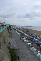 Brighton Breeze #72