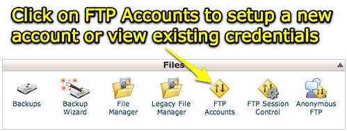 cPanel X - FTP Accounts