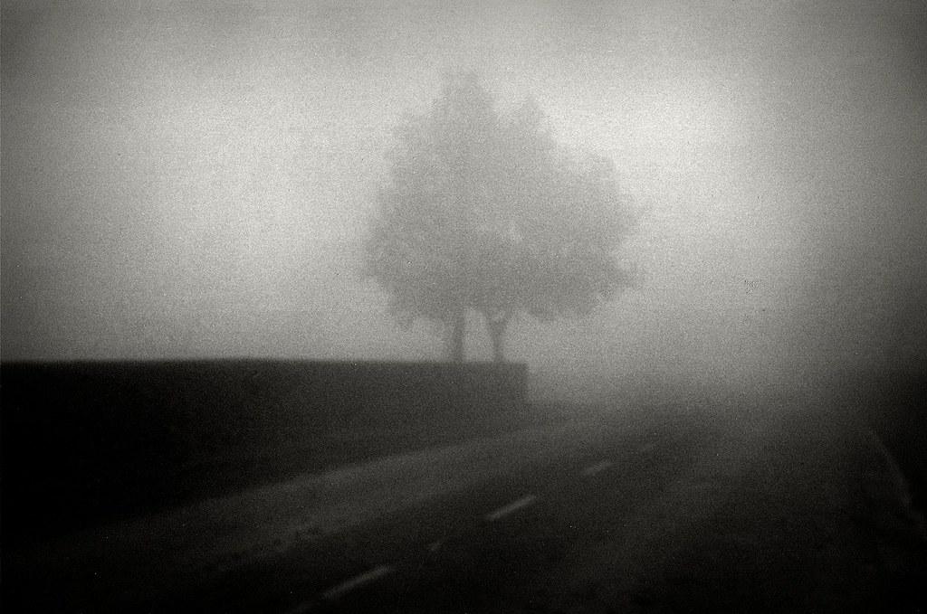 Mists #00270024