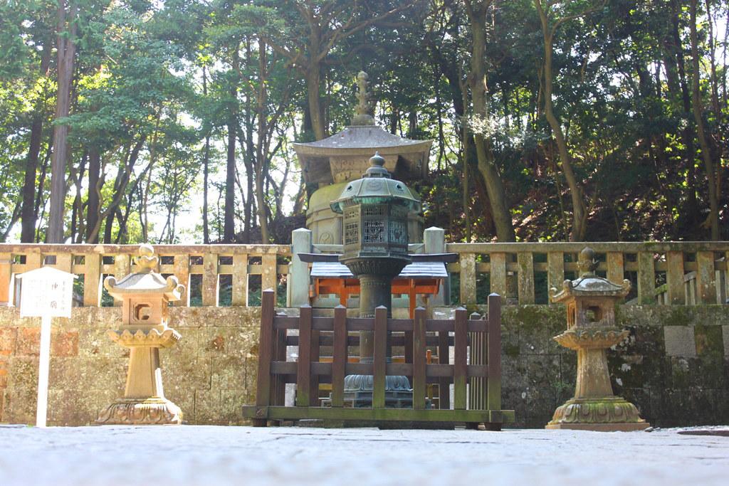 Shizuoka Guide (5)