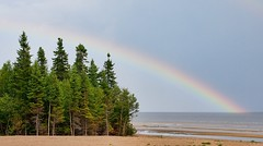 Rainbow on the lake (Michel Filion) Tags: trees sky lake canada beach nature water canon rainbow sand lac lacstjean 40d tamronspaf1750mmf28xrdiiildasphericalif mike9alive michelfilion
