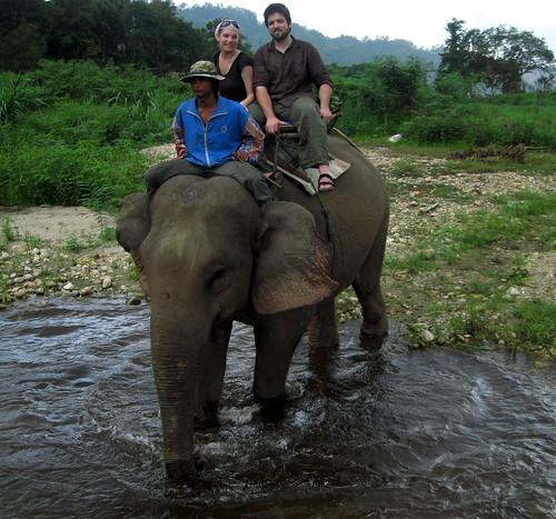 Hey, we're on an elephant!