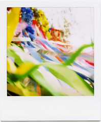 7 July (masaaki miyara) Tags: color colour polaroid sx70 design photo graphic july 7 landcamera    argylestreettearoom masaakimiyara